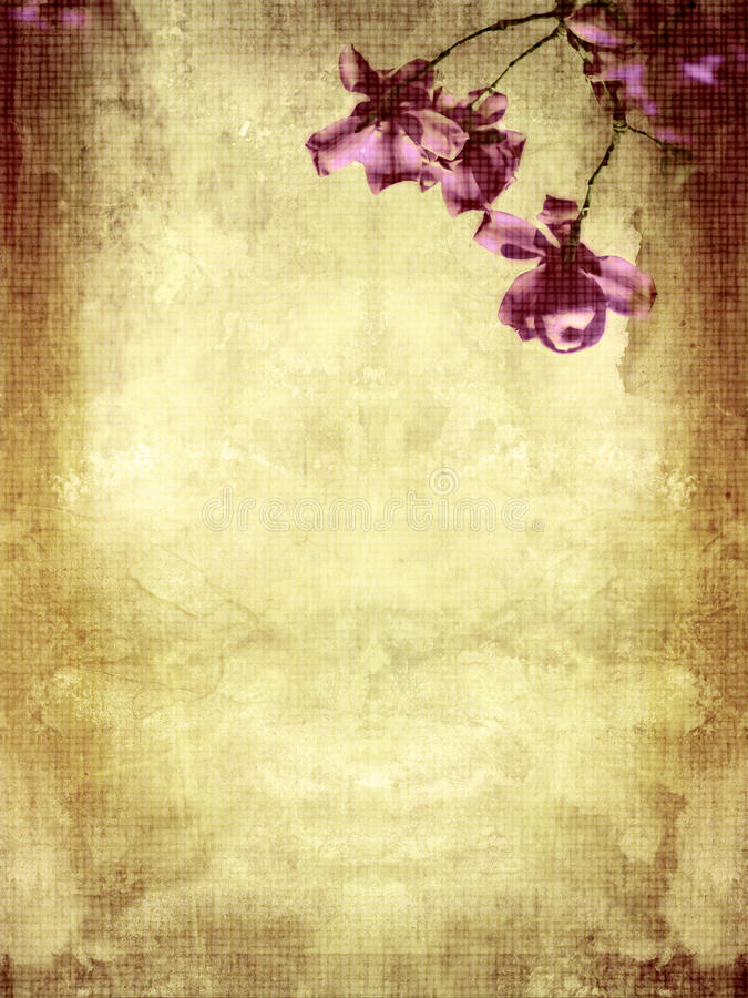 Fondo hermoso del grunge con la magnolia stock de ilustración