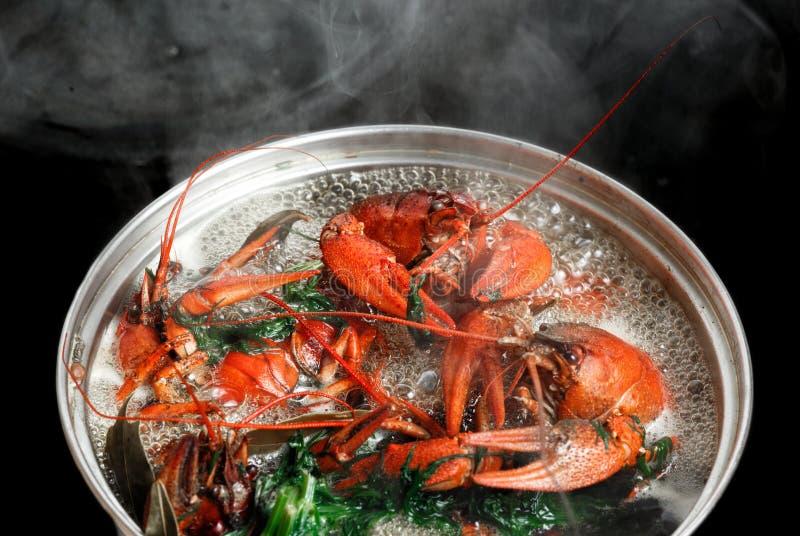 Fondo hervido del negro del cazo del agua hirvienda de la hoja de laurel del eneldo de los cangrejos que cocina los cangrejos imagen de archivo