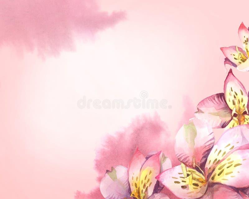Fondo horizontal floral de flores color de rosa y del SPL de la acuarela libre illustration