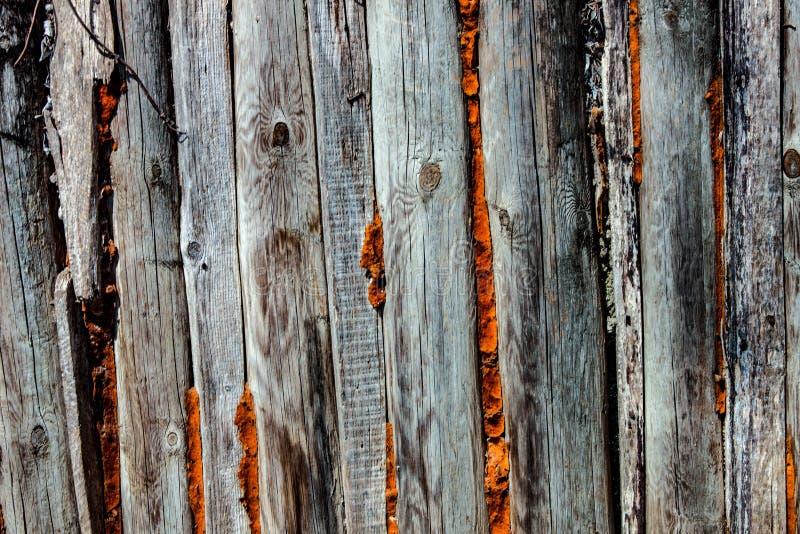 Fondo imagen que representa la cerca de madera determinado vemos el desgaste del tiempo y del sol imagen de archivo libre de regalías