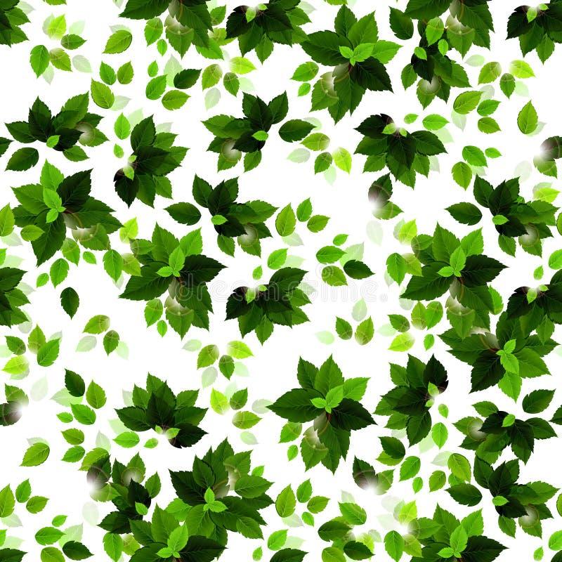 Fondo inconsútil con las hojas verdes de las estaciones ilustración del vector
