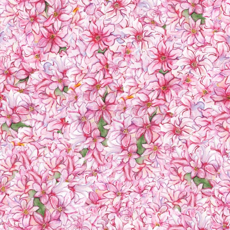 Fondo inconsútil de la textura del modelo del jacinto de la acuarela de la flor de la planta rosada de la naturaleza libre illustration