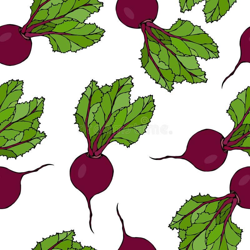 Fondo inconsútil de remolachas maduras Modelo sin fin de remolachas con las hojas superiores Ensalada de las verduras frescas Ill ilustración del vector