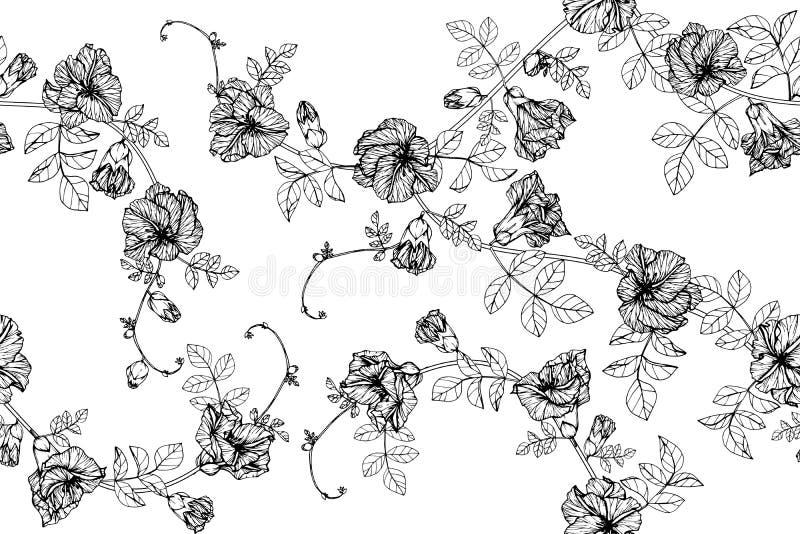Fondo inconsútil del estampado de plores del guisante de mariposa ilustración del vector