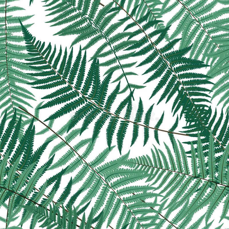 Fondo inconsútil del modelo del vector de Fern Leaf Vector Fern Leaf ilustración del vector