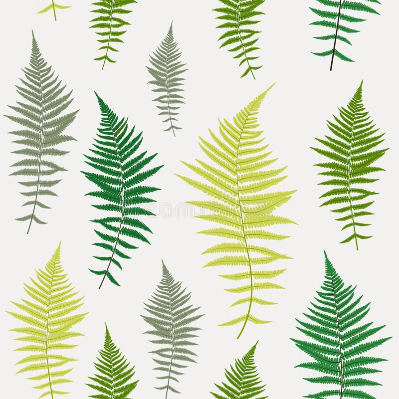 Fondo inconsútil del modelo del vector de Fern Leaf Vector Fern Leaf stock de ilustración