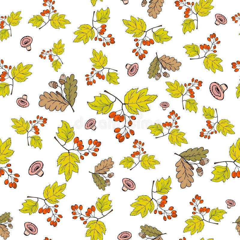 Fondo inconsútil del otoño con las bellotas que caen y ramas con las bayas del Crataegus ilustración del vector