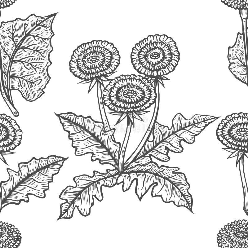 Fondo inconsútil dibujado mano del vector con el coltsfoot libre illustration