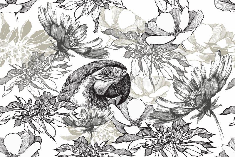 Fondo inconsútil floral del vintage con el loro y las flores Blanco negro, mano dibujada, ejemplo del vector stock de ilustración