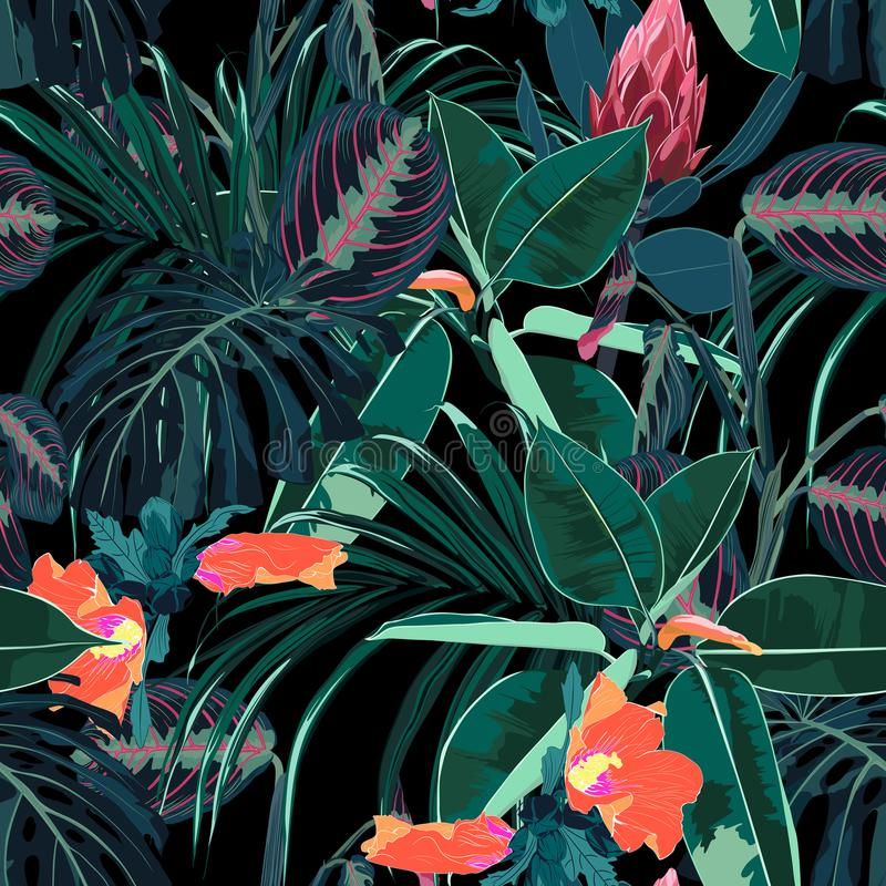 Fondo inconsútil hermoso del estampado de flores con las plantas y las flores oscuras tropicales de la selva stock de ilustración
