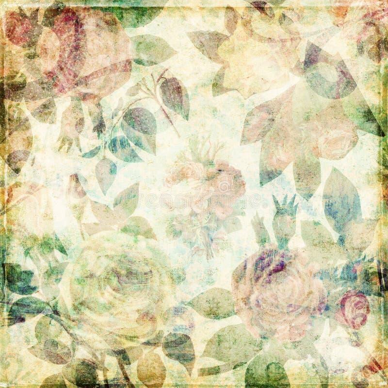 Fondo lamentable de las rosas botánicas sucias de la vendimia stock de ilustración