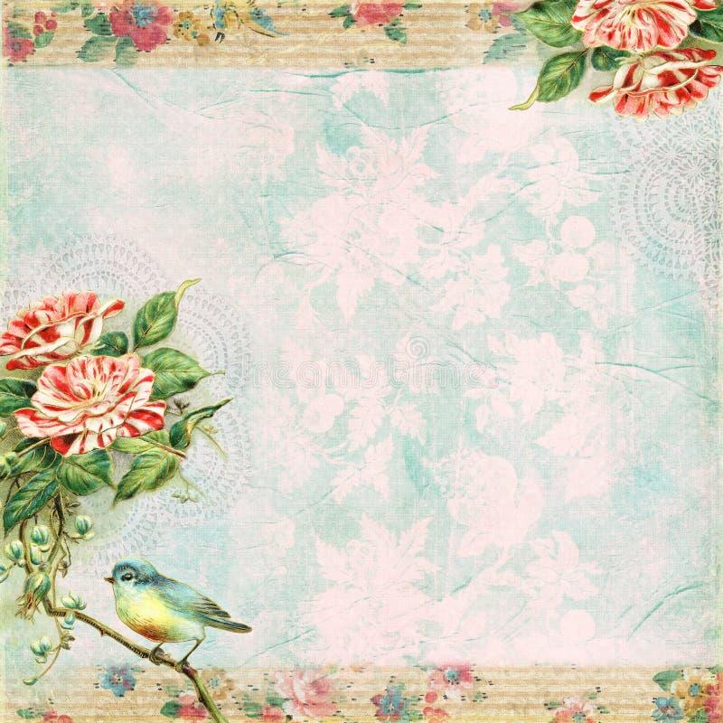 Fondo lamentable del pájaro y de Rose del vintage ilustración del vector