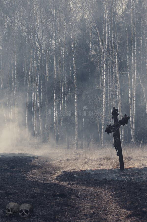 Fondo místico de Halloween con el bosque oscuro imagen de archivo