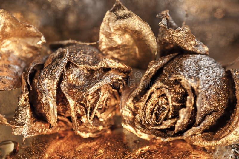 Fondo macro abstracto de la bella arte con las rosas de oro y los descensos del agua Símbolo del amor, riqueza, rica fotos de archivo