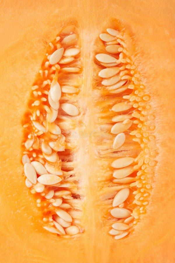 Fondo macro de la textura de las semillas del melón del cantalupo imágenes de archivo libres de regalías
