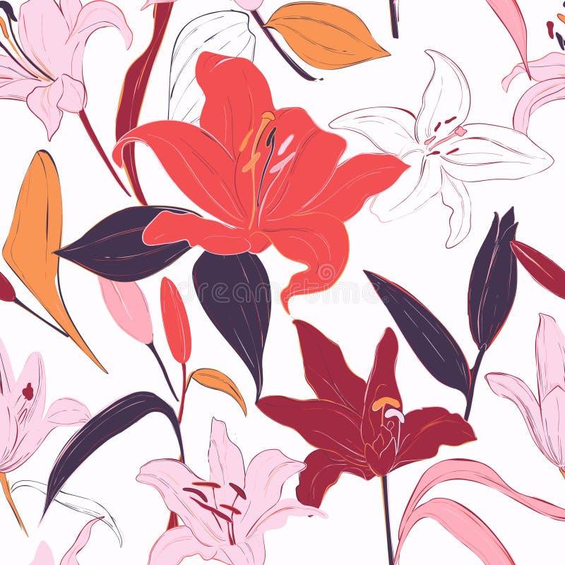 Fondo a mano de los lirios rojos Flores del verano del vector, modelo aislado de la botánica Telas de la floración del jardín, pa stock de ilustración