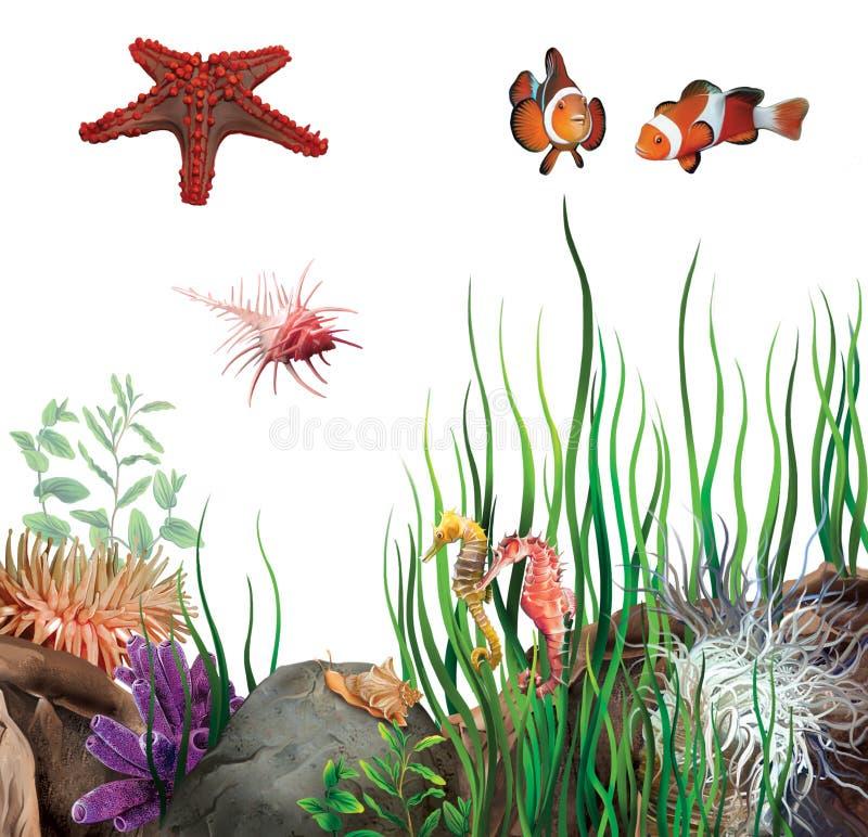 Fondo marino. Stella di mare, pesce del pagliaccio, cavallucci marini, coperture. illustrazione vettoriale