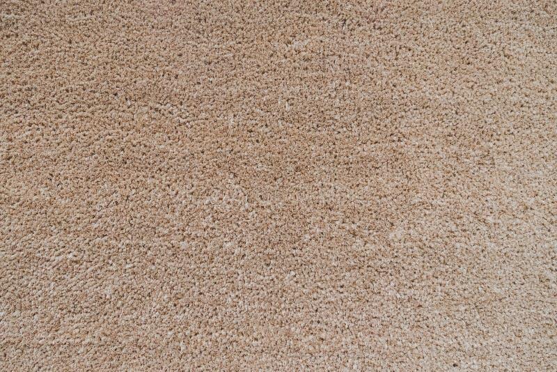 Fondo marrone neutrale senza cuciture di struttura del tappeto fotografia stock libera da diritti