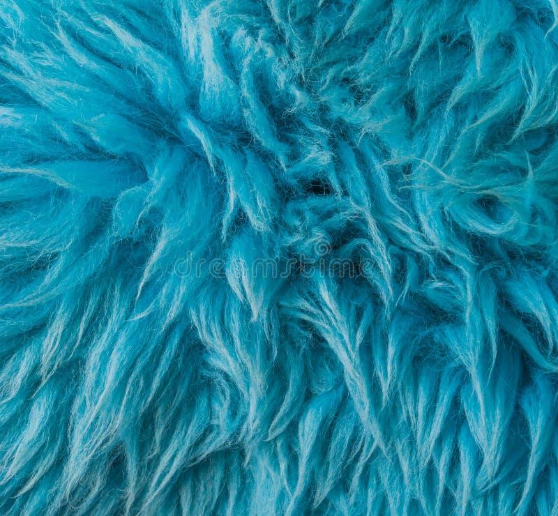 Fondo moderno di struttura del primo piano della pelliccia animale molle blu macro immagine stock libera da diritti