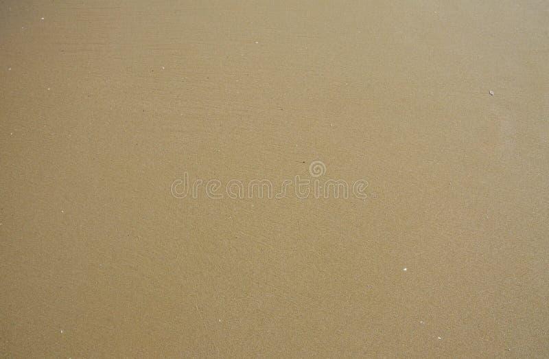 Fondo mojado de la arena fotografía de archivo libre de regalías
