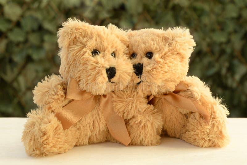 Fondo mullido de la vegetación de los osos de peluche de los pares del amor foto de archivo libre de regalías