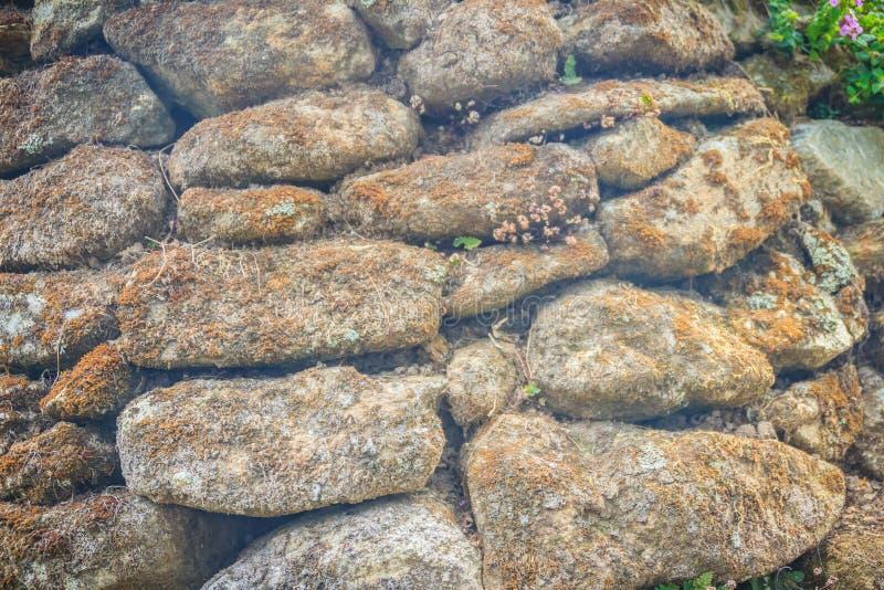 Fondo muscoso asciutto di struttura della parete di pietra Pareti di pietra di Brown di ol fotografie stock libere da diritti
