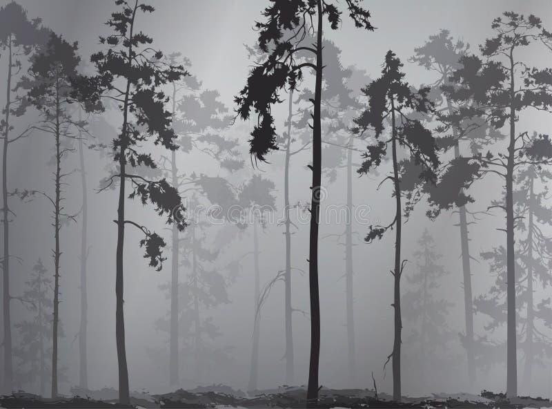 Fondo natural con una silueta de un bosque del pino stock de ilustración