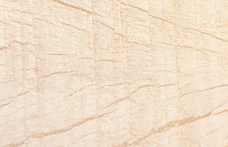 Fondo natural del modelo de la vieja textura de madera blanca de lite imagen de archivo libre de regalías