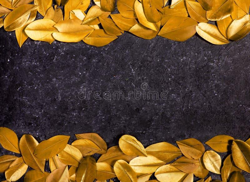 Fondo negro con las plumas amarillas fotografía de archivo libre de regalías