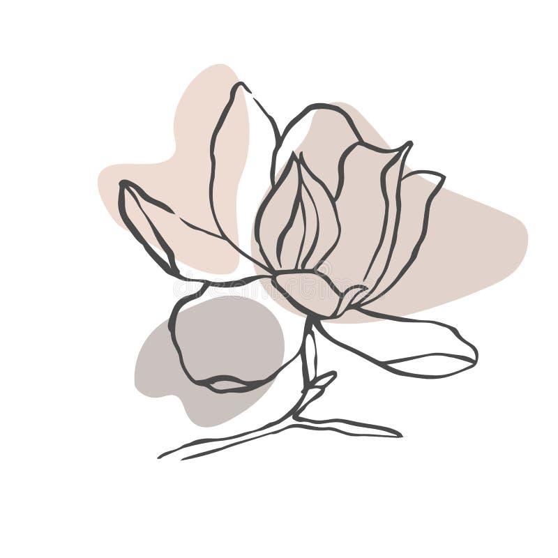 Fondo o disposici?n abstracto moderno del vector de las formas Flor del dibujo lineal de contorno de la magnolia Arte moderno del stock de ilustración