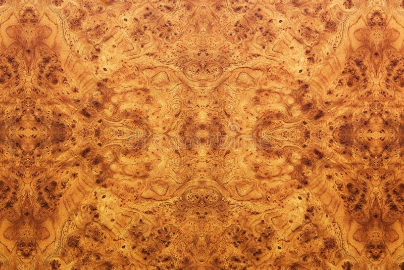 Fondo o struttura di legno immagini stock