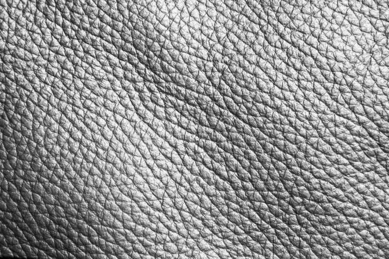 Fondo o textura de cuero foto de archivo