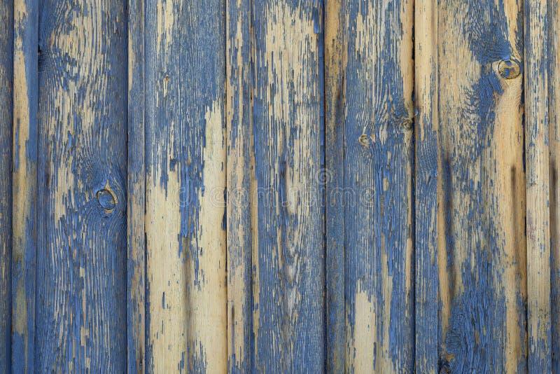 Fondo o textura de madera amarillo con la peladura de la pintura azul fotografía de archivo