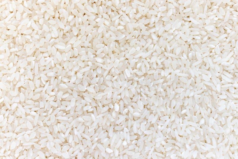 Fondo organico crudo fresco di struttura del riso del risotto fotografie stock libere da diritti