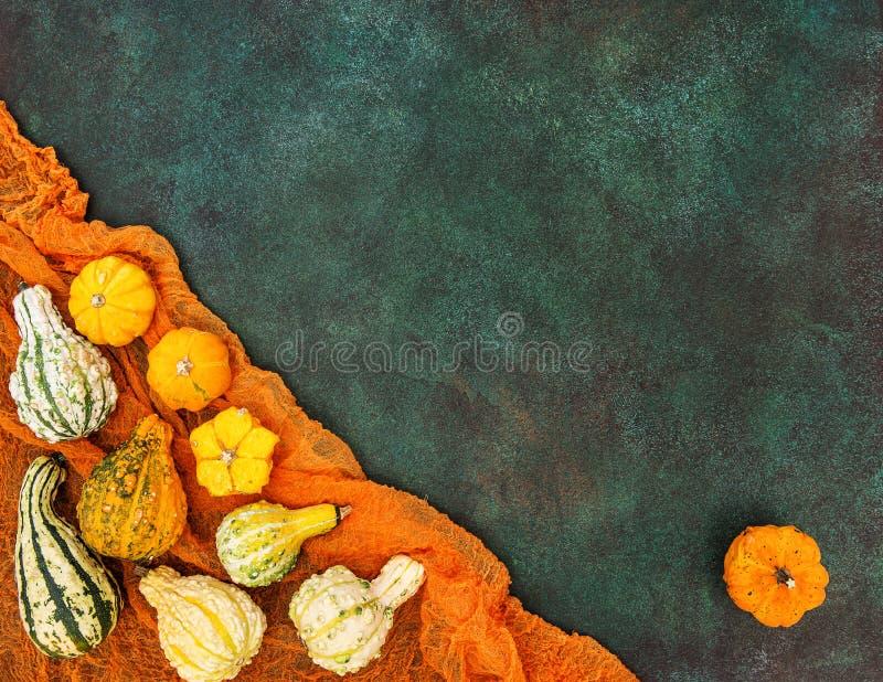 Download Fondo Oscuro Autumn Harvest Thanksgiving De La Calabaza Foto de archivo - Imagen de anaranjado, piedra: 100528212