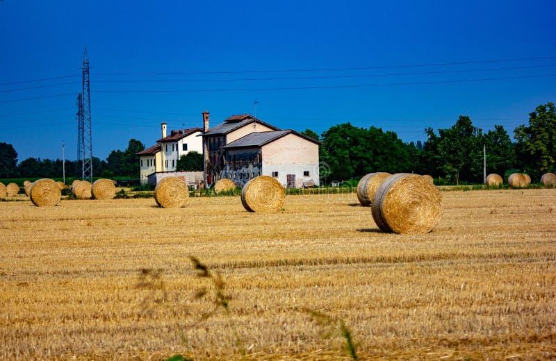 Fondo paesaggio della pianura con l'azienda agricola campo con le balle di fieno raccolto immagini stock libere da diritti