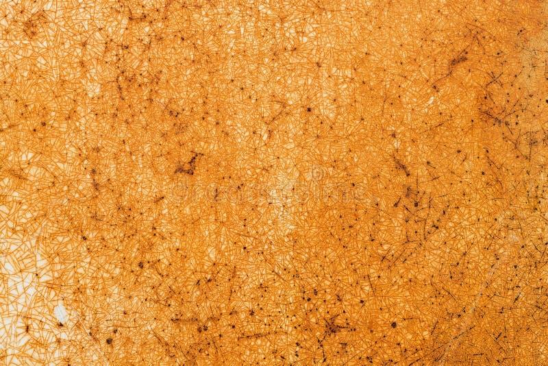 Fondo pintado lamentable oxidado del extracto de la textura del metal fotografía de archivo libre de regalías