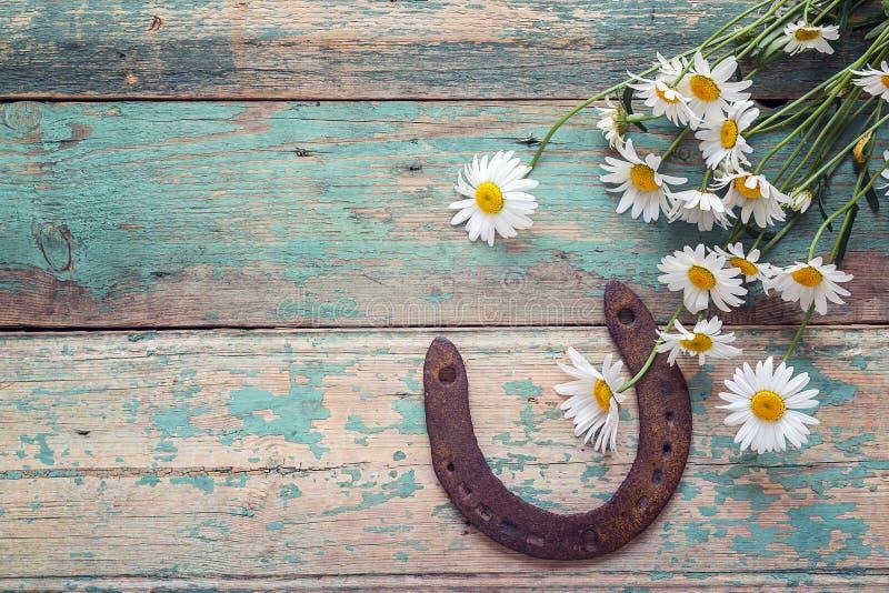 Fondo rústico con la herradura y el ramo oxidados de margaritas encendido foto de archivo libre de regalías