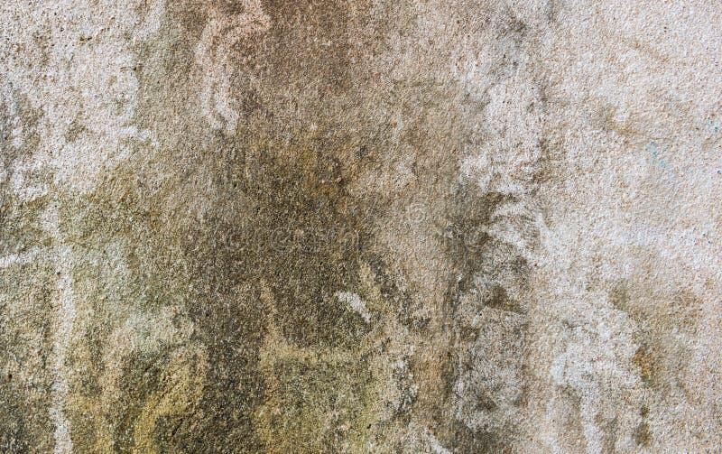 Fondo rústico concreto de la pared con el musgo seco de la suciedad imagenes de archivo