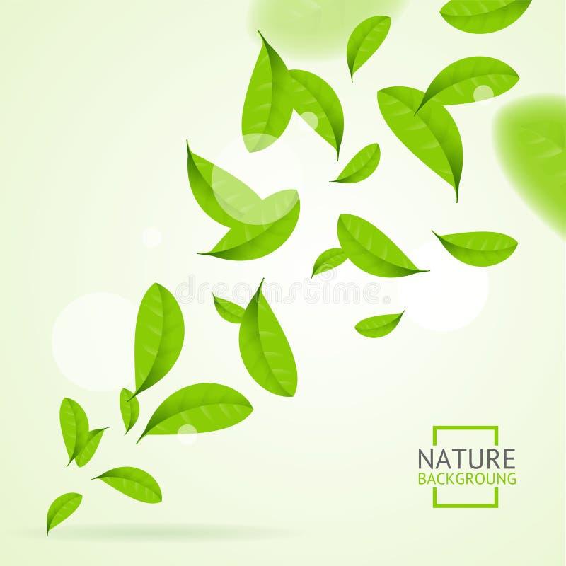 Fondo realistico del modello delle foglie verdi della mosca Vettore royalty illustrazione gratis