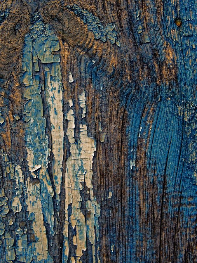 Fondo resistido marrón azulado-blanco pálido del modelo de madera oscuro de la textura del extracto imagen de archivo libre de regalías