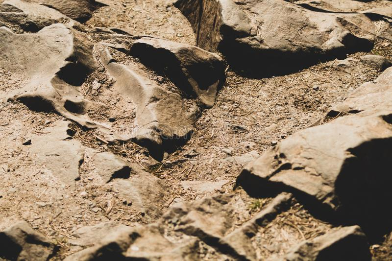 Fondo roccioso Pietre nella foresta fotografia stock