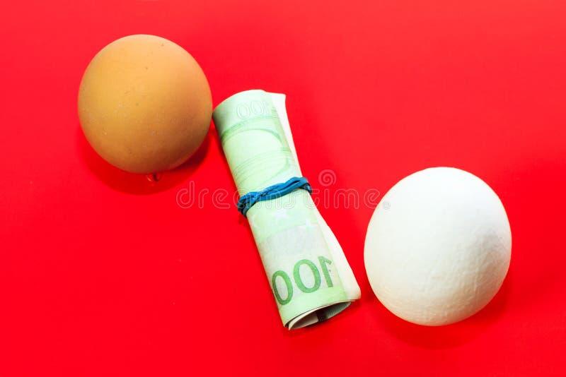 Fondo rojo Clara de huevo o billetes de banco marrones claros y euro en un túbulo torcido fotografía de archivo libre de regalías