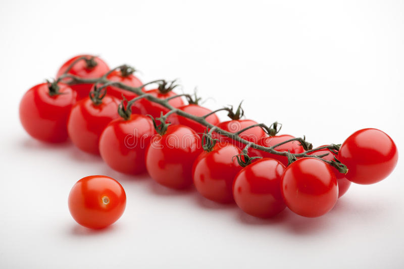 Fondo rojo del blanco del primer de los tomates de cereza imágenes de archivo libres de regalías