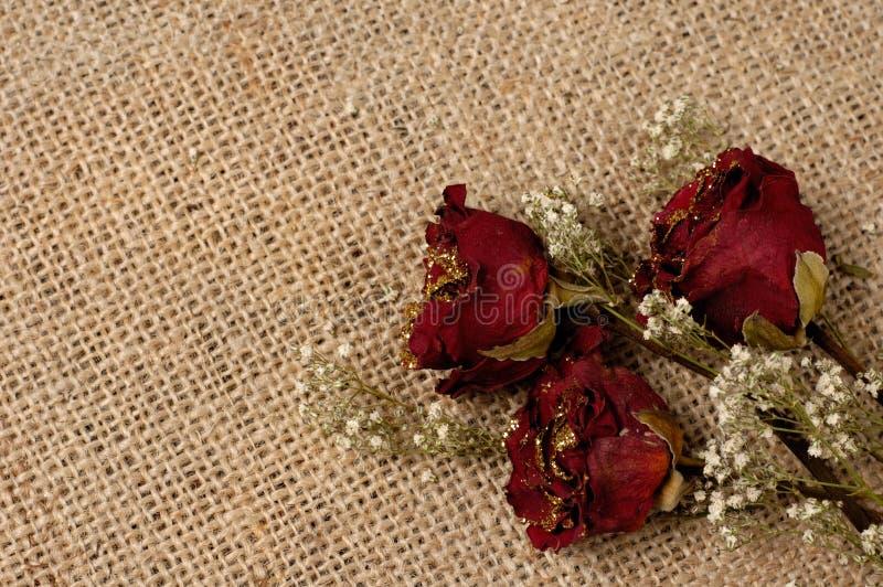 Fondo romántico fotografía de archivo libre de regalías