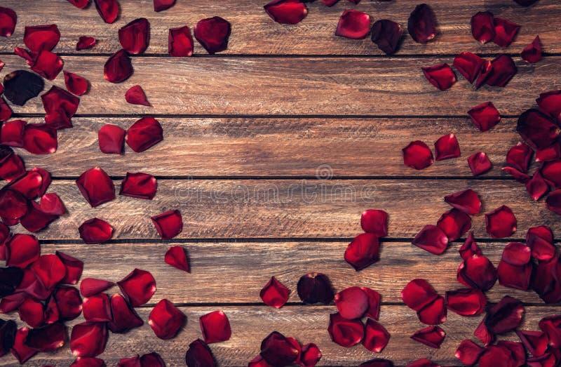 Fondo romántico con la frontera de pétalos de rosas fotos de archivo libres de regalías
