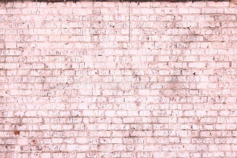 Fondo rosado abstracto saturado brillante de la pared de ladrillo vieja imágenes de archivo libres de regalías