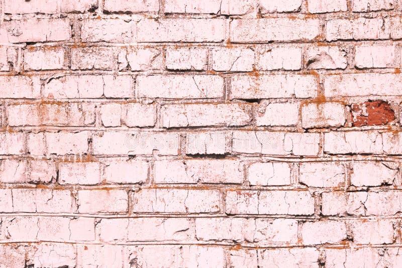 Fondo rosado abstracto saturado brillante de la pared de ladrillo vieja foto de archivo