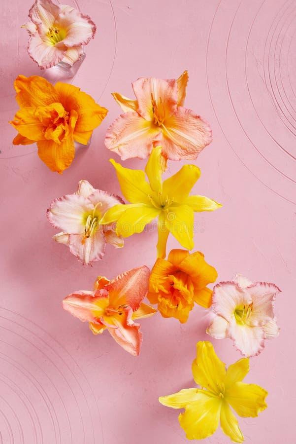 Fondo rosado blando con las flores fotos de archivo libres de regalías