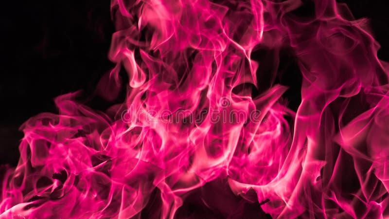 Fondo rosado de la llama del fuego foto de archivo libre de regalías